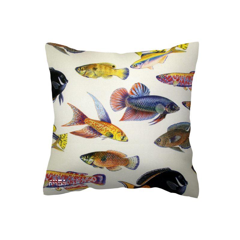 כרית דגים ברקע בהיר